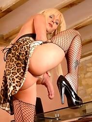 Leopard Print Cougar