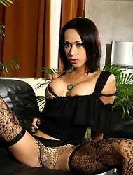 Gorgeous brunette Lee stripping in sexy stockings