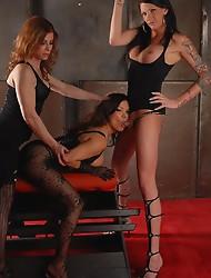 TS hotties Morgan, Jasmine and Carmen having oral sex