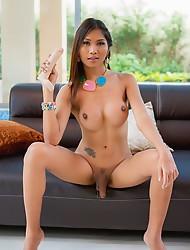 Bikini Lounge Lover
